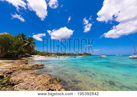 View of the stony beach in Bayahibe La Altagracia Dominican Republic. Copy space for text