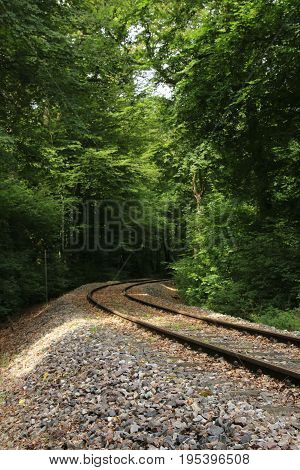 Rails, which lies in a right curve in the forest