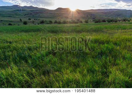 The sun comes because of the mountain to the meadow covered with a green grass. In the distance not numerous trees. Krasnodar Krai Kuban.