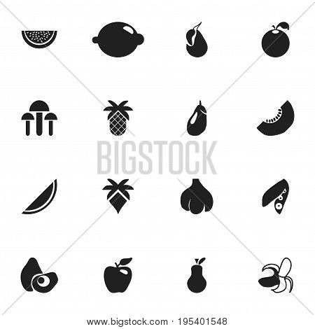 Set Of 16 Editable Berry Icons. Includes Symbols Such As Papaya, Citrus, Honeycrisp And More. Can Be Used For Web, Mobile, UI And Infographic Design.