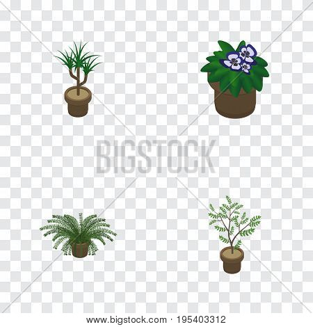 Isometric Houseplant Set Of Houseplant, Fern, Plant And Other Vector Objects. Also Includes Botany, Flowerpot, Fern Elements.
