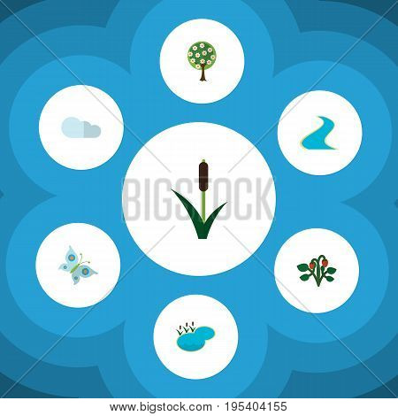 Flat Icon Nature Set Of Berry, Overcast, Monarch And Other Vector Objects. Also Includes Grass, Cloudy, Strawberry Elements.