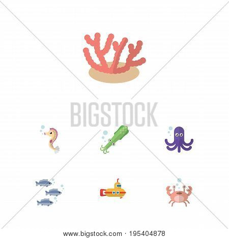 Flat Icon Sea Set Of Algae, Tentacle, Cancer And Other Vector Objects. Also Includes Hippocampus, Sea, Submarine Elements.