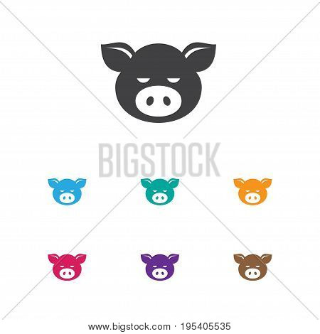 Vector Illustration Of Zoo Symbol On Pork Icon. Premium Quality Isolated Piggy Element In Trendy Flat Style.