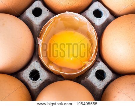 Close-up view of raw chicken. Every egg is a yellow egg. There is one egg to crack and shows prominently Surrounded by chicken eggs.