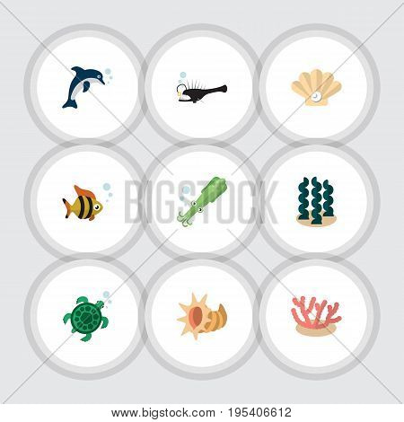 Flat Icon Marine Set Of Octopus, Algae, Playful Fish And Other Vector Objects. Also Includes Alga, Cockleshell, Scallop Elements.