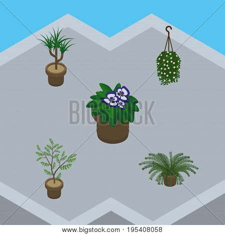 Isometric Flower Set Of Flowerpot, Houseplant, Plant And Other Vector Objects. Also Includes Plant, Pot, Botany Elements.