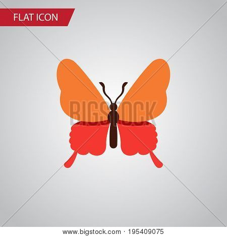 Isolated Butterfly Flat Icon. Danaus Plexippus Vector Element Can Be Used For Butterfly, Monarch, Moth Design Concept.