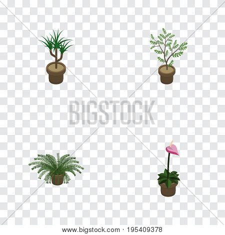 Isometric Flower Set Of Plant, Grower, Houseplant And Other Vector Objects. Also Includes Botany, Plant, Flowerpot Elements.