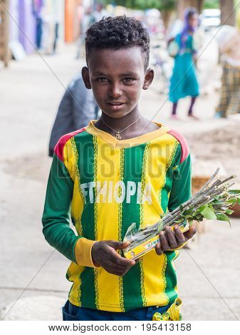 AXUM ETHIOPIA- June 30 2016: A boy selling mefakia a natural wooden toothbrush used in Ethiopia.