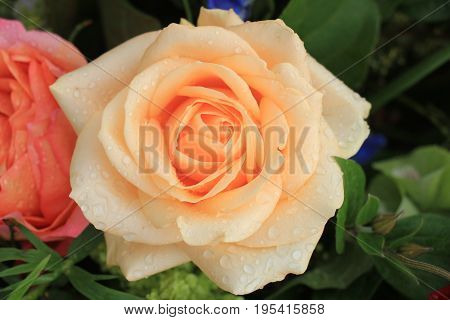 Mixed flower arrangement: various flowers in different shades of orange for a wedding