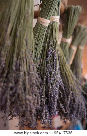 Dried bunches of lavender hanging on string.