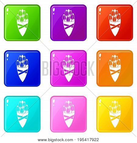 Bouquet of tulip flowers icons of 9 color set isolated vector illustration