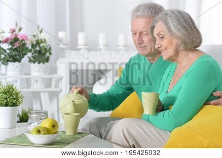 Portrait of a happy senior couple drinking tea together