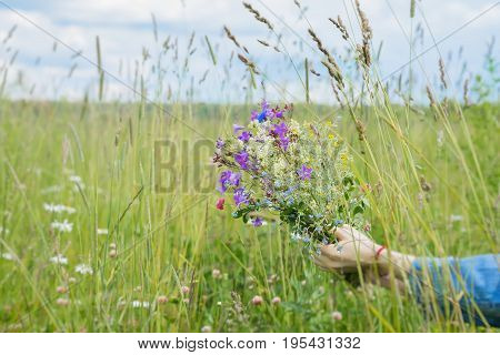 Wildflowers in the palms of a girl on background of summer meadow with sky. Concept of seasons, environmental and ecology, nature, natural background