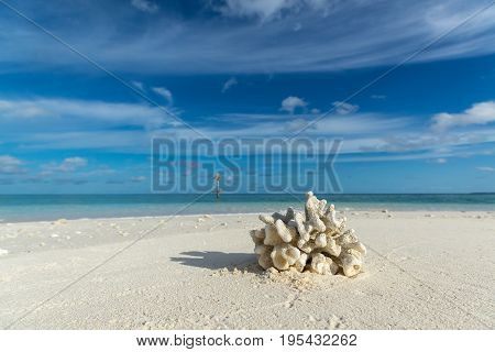Beautiful Seascape With White Sand Beach And Beautiful Turquoise Sea With The Bleached Coral In Fore