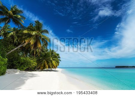 Beautiful Beach. View Of Nice Tropical Beach With Palms Around. Holiday And Vacation Concept. Tropic