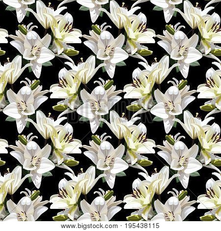 White Flowers of Lily (Madonna Lily). Seamless floral pattern on black background.