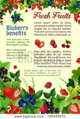 Berries poster of garden and forest berry harvest. Vector design of farm fresh raspberry and strawberry, red and black currant, cherry and gooseberry, blueberry or blackberry and cranberry fruit