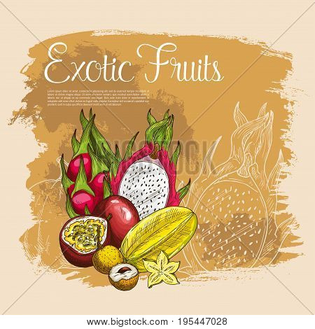 Exotic fruits vector poster of tropical papaya or mango, passionfruit maracuya and carambola starfruit, durian or figs, juicy guava or avocado and feijoa, lichee and mangosteen. Sketch design