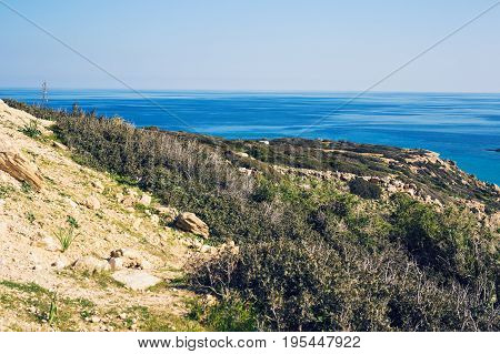 Seascape With green Hills And Indented Coastline