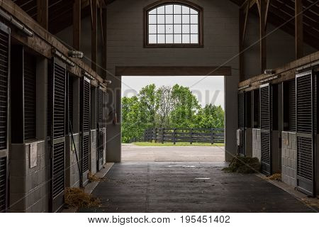 Cleaning Time in Horse Barn on quiet morning