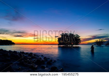 People photography the dead tree by the sea with the beautiful morning sun.