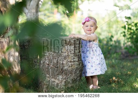 Little girl is standing and holding onto the stump in the orchard.