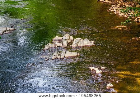 Colorful Surface Of The Forest River