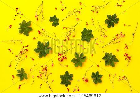 From above pattern with green leaves and small red flowers on yellow background.