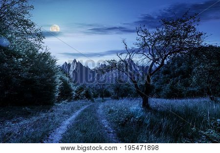 road through the abandoned orchard in mountains. Composite image of High Tatra ridge. beautiful summer landscape at night in full moon light