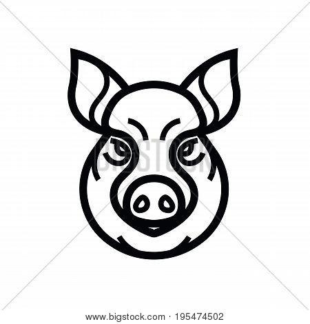 vector image of swine or pig head - mascot emblem