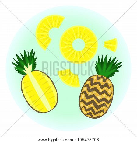 Flat Vector Ripe Pineapple Set - Isolated Sliced Fruit