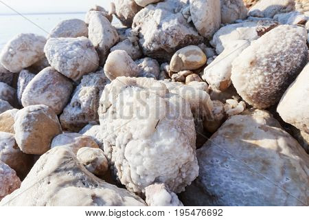 Close up of rock which covered with salt salt texture salt crystal at the Dead Sea coast Jordan.