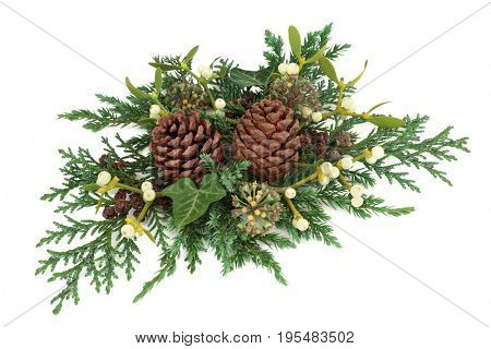 Winter and Christmas greenery decoration with cedar cypress and juniper leaf sprigs with mistletoe, ivy and pine cones on white background.