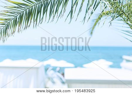 Fragment A green palm branch against the background of the sea and sky. In the background, beach umbrellas are unfocused. Selected focus. Background in style Vacation and travel Horizontal