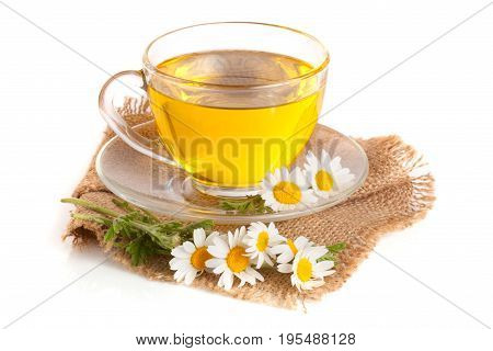 Herbal tea with fresh chamomile flowers on sackcloth isolated on white background.