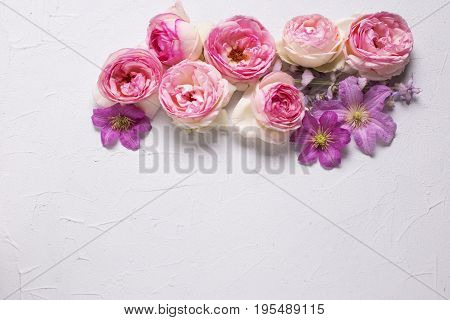 Pink roses and violet summer clematis flowers on grey background. Place for text. Flat lay. Mock up.