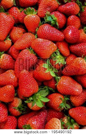 Closeup on strawberries in basket, strawberry basket, strawberries on wooden table, basket with strawberries, strawberries in natural background