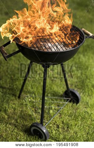 Concept of summer grilling, barbecue, fire background