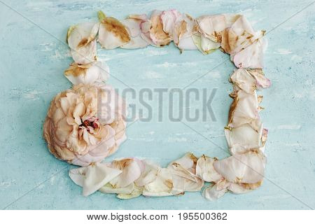 Autumn Mock Up In Pastel Colors: Faded Pink Rose And Frame Of Wilted Flower Petals On A Blue Backgro