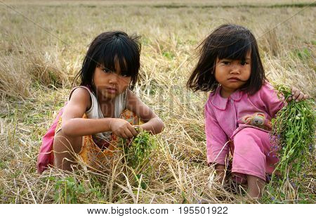 Poor Child On Dry Grass Meadow