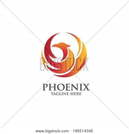 best phoenix logo concept, luxury phoenix consulting element logo icon concept,