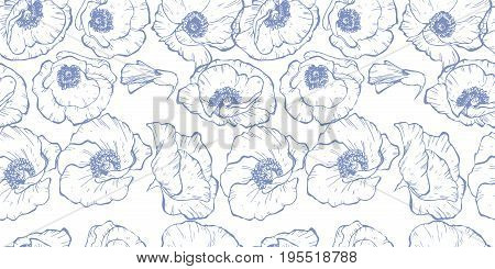 Seamless pattern with blue contoured poppy flowers isolated on white background. Vector