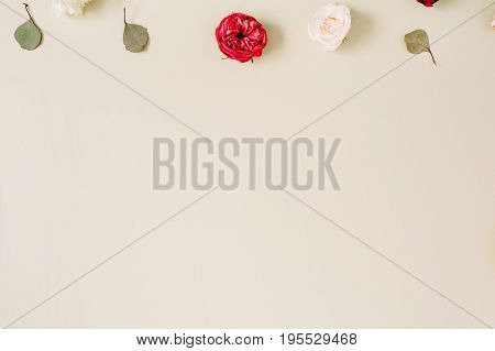 Blog or website hero with beige and red roses eucalyptus leaf on pale pastel beige background. Flat lay top view. Floral texture background.