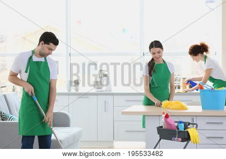 Cleaning service team working at home