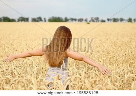 Portrait of a beautiful 8-year-old girl with long hair and green eyes in a golden wheat field at a summer day