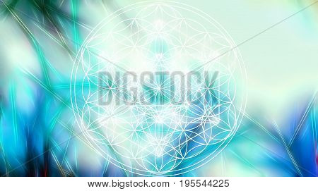 Light merkaba and Flower of life on abstract color background and fractal structure. Sacred geometry