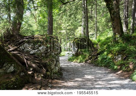 Hiking trail around the Eibsee in Germany