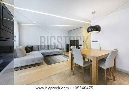 Modern living room and kitchen in stylish apartment